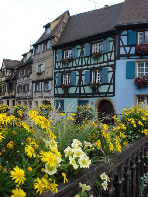 Houses in Colmar