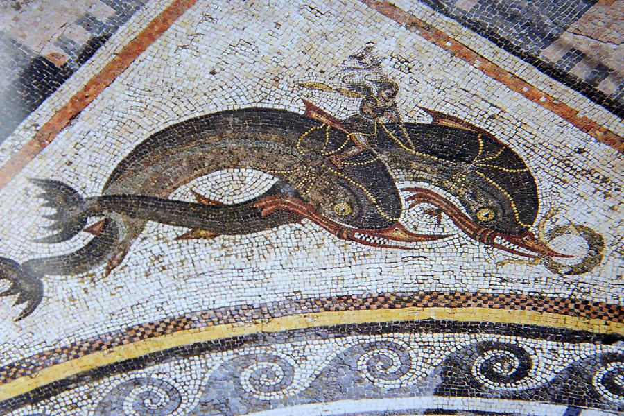 Apollon with Dolphins