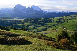 Alpine pasture with mountian range