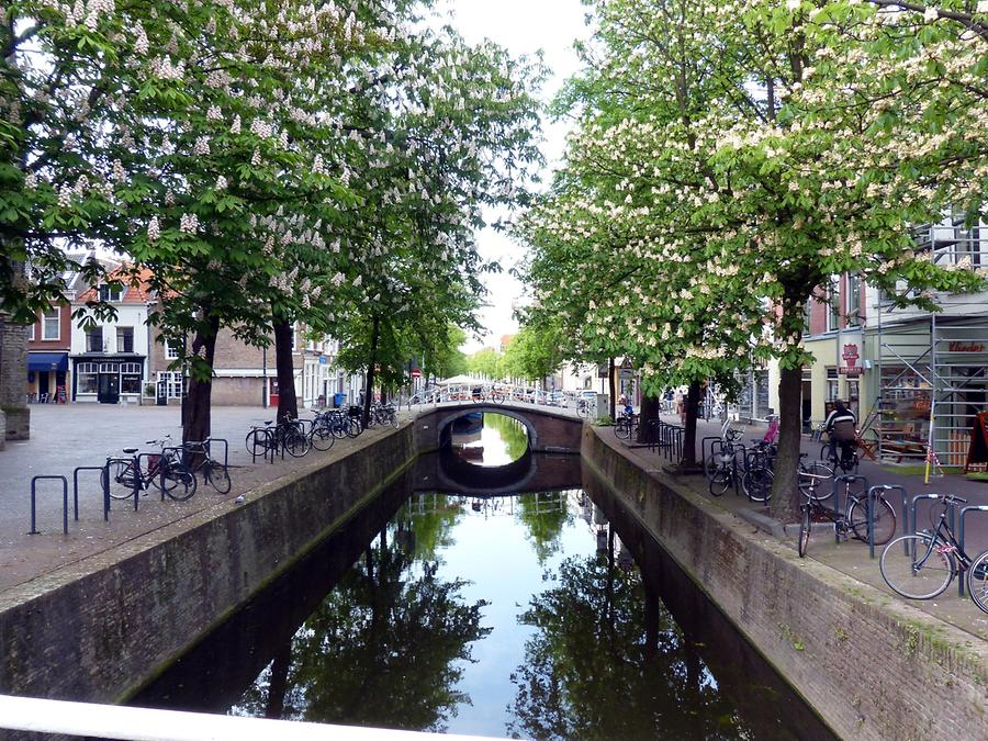 Delft - Gracht with Flowering Chestnut Trees