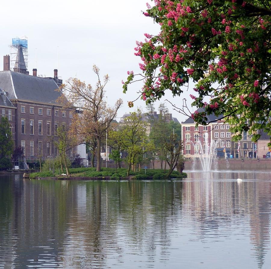 The Hague - Hofvijver, the Court Pond