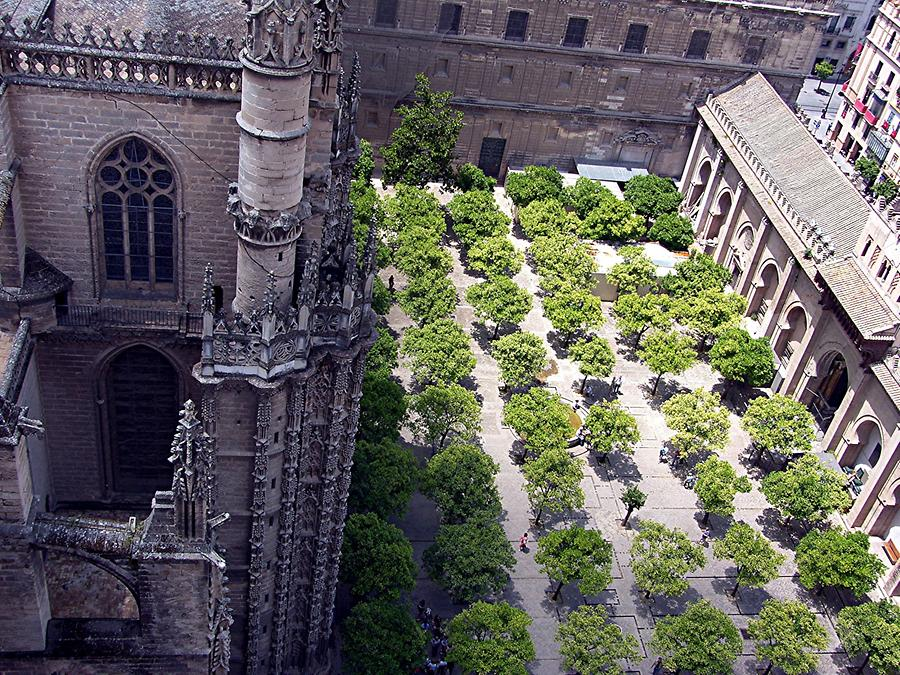Seville Cathedral – View of the orange courtyard