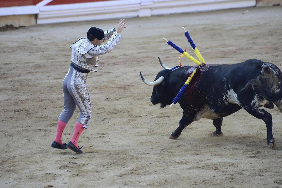 Banderillas Bullfight