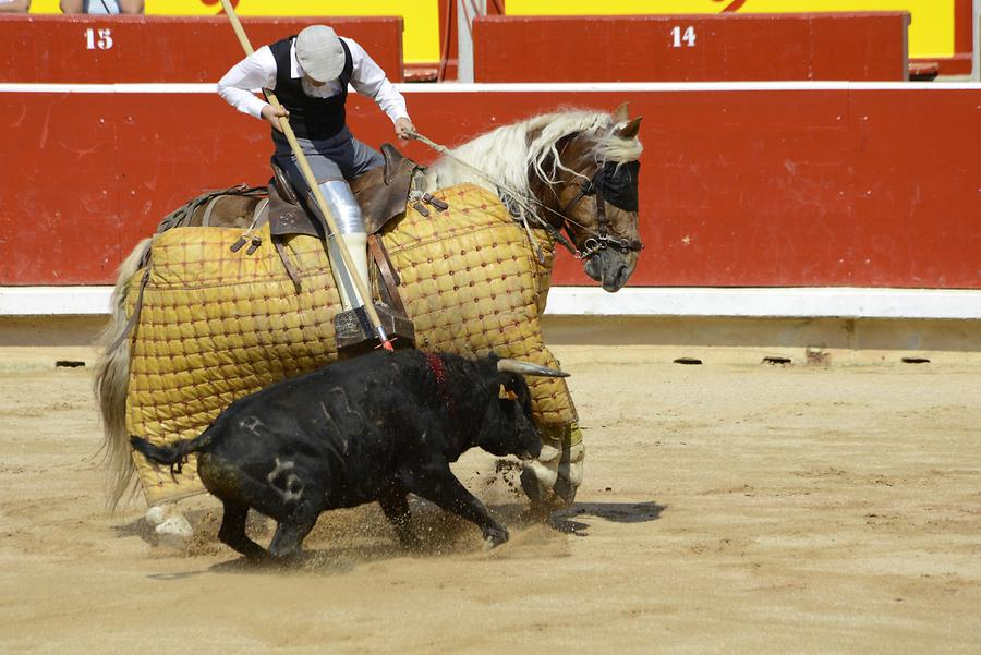 Picadores Bullfight