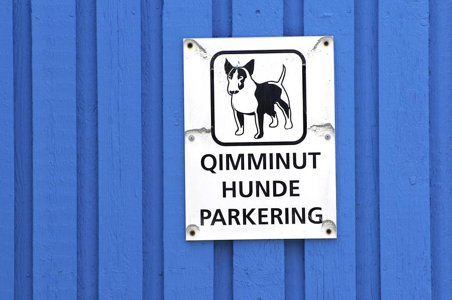 Parking for Sled Dogs