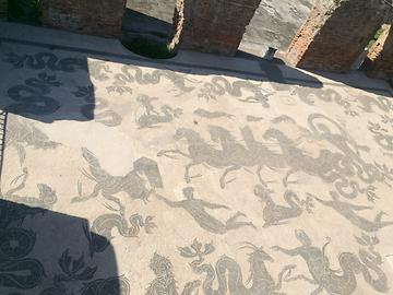 Ostia - Mosaic Neptune thermal, Photo: T. Högg