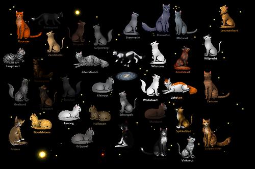 Warrior Cats Alle Charaktere