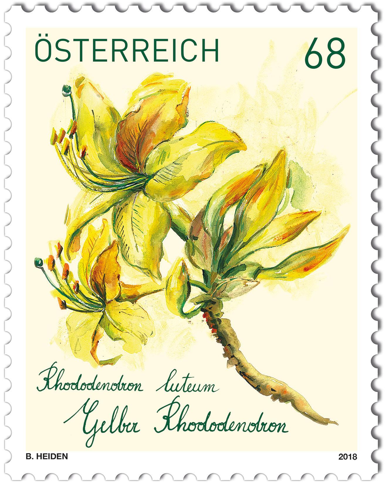 Rhododendron Gelbe Blätter treuebonusmarke 2017 gelber rhododendron 2018 kunst und kultur