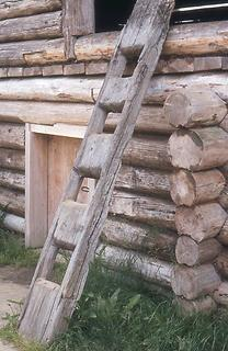 Ladder hewn from a trunk
