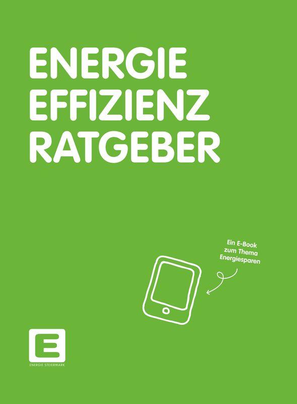 Bucheinband von 'Energie Effizienz Ratgeber'