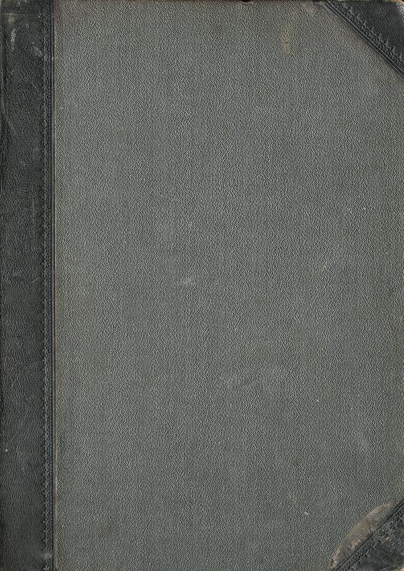 Bucheinband von 'Der grüne Kakadu'