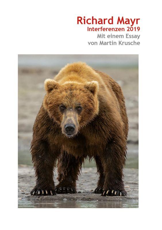 Bucheinband von 'Richard Mayr - Interferenzen 2019'