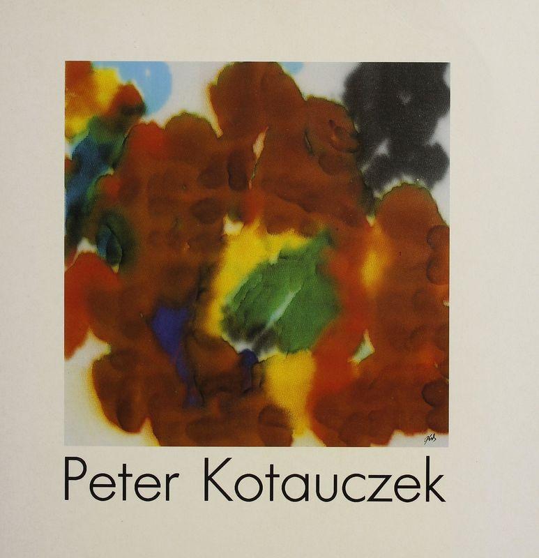 Bucheinband von 'Peter Kotauczek - Systemische Malerei'