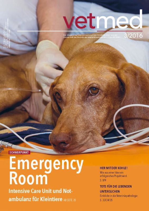 Cover of the book 'vetmed - Das Magazin der Veterinärmedizinischen Universität Wien und der Gesellschaft der Freunde der Veterinärmedizinischen Universität Wien, Volume 3/2016'