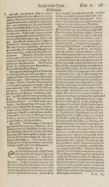 Bild der Seite - 115 - in Artzney Buch
