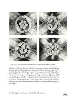 Bild der Seite - 265 - in Die Baukunst des 13. Jahrhunderts in Österreich