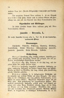 Bild der Seite - 84 - in Die Giftgewächse der österreichischen Alpenländer