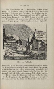 Bild der Seite - 229 - in Die nordöstliche Steiermark - Eine Wanderung durch vergessene Lande
