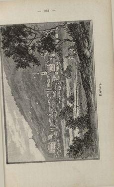 Bild der Seite - 263 - in Die nordöstliche Steiermark - Eine Wanderung durch vergessene Lande