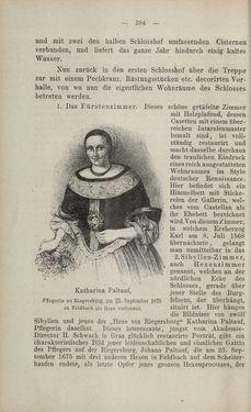 Bild der Seite - 384 - in Die nordöstliche Steiermark - Eine Wanderung durch vergessene Lande