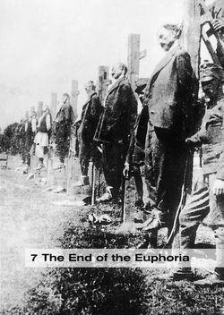 Bild der Seite - 239 - in THE FIRST WORLD WAR - and the End of the Habsburg Monarchy, 1914 – 1918