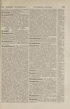 Bild der Seite - 234 - in Pierers Konversations-Lexikon - Botts-Dampfpflug, Band 3