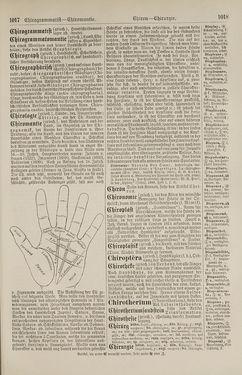 Bild der Seite - 1018 - in Pierers Konversations-Lexikon - Botts-Dampfpflug, Band 3