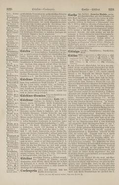 Bild der Seite - 1224 - in Pierers Konversations-Lexikon - Botts-Dampfpflug, Band 3