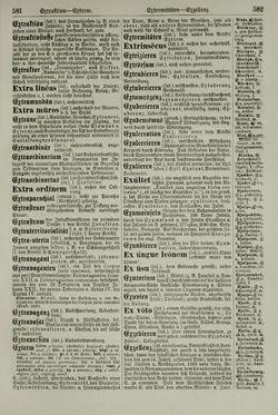 Bild der Seite - 582 - in Pierers Konversations-Lexikon - Emailmalerei-Fronton, Band 5