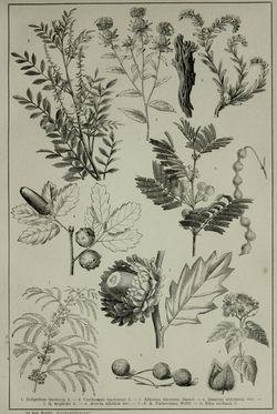Bild der Seite - (000479) - in Pierers Konversations-Lexikon - Emailmalerei-Fronton, Band 5