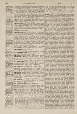 Bild der Seite - 432 - in Pierers Konversations-Lexikon - Haller-Kaltbrenner, Band 7
