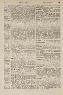 Bild der Seite - 396 - in Pierers Konversations-Lexikon - Kalkeinlagerungen-Lübbesee, Band 8