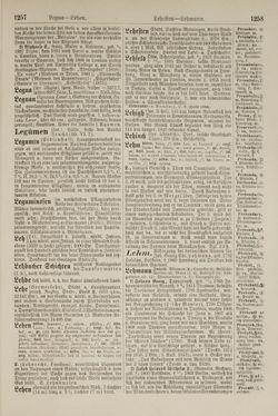 Bild der Seite - 1258 - in Pierers Konversations-Lexikon - Kalkeinlagerungen-Lübbesee, Band 8