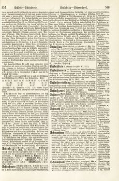 Bild der Seite - 557 - 558 - in Pierers Konversations-Lexikon - Rufen-Symi, Band 11