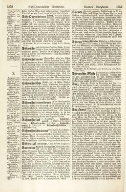 Bild der Seite - 1555 - 1556 - in Pierers Konversations-Lexikon - Rufen-Symi, Band 11