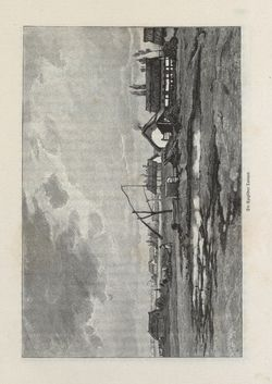 Bild der Seite - 205 - in Die österreichisch-ungarische Monarchie in Wort und Bild - Ungarn (2), Band 9