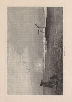 Bild der Seite - 333 - in Die österreichisch-ungarische Monarchie in Wort und Bild - Ungarn (2), Band 9