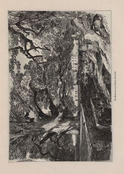 Bild der Seite - 21 - in Die österreichisch-ungarische Monarchie in Wort und Bild - Dalmatien, Band 11