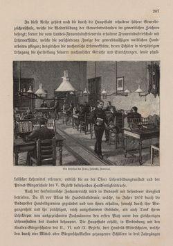 Bild der Seite - 207 - in Die österreichisch-ungarische Monarchie in Wort und Bild - Ungarn (3), Band 12