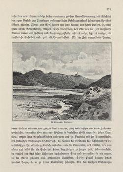 Bild der Seite - 319 - in Die österreichisch-ungarische Monarchie in Wort und Bild - Böhmen (2), Band 15