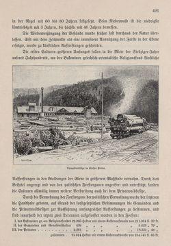 Bild der Seite - 491 - in Die österreichisch-ungarische Monarchie in Wort und Bild - Bukowina, Band 20