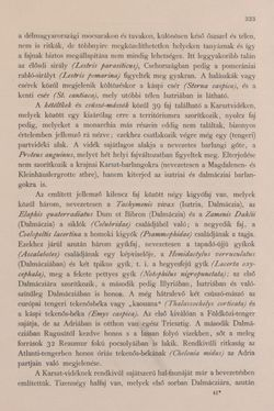 Bild der Seite - 323 - in Az Osztrák-Magyar Monarchia írásban és képben - Bevezetö Kötet (I), Band 2