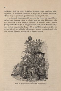 Bild der Seite - 376 - in Az Osztrák-Magyar Monarchia írásban és képben - Az Osztrák Tengermellék és Dalmáczia (Tengermellék), Band 10