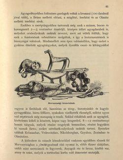 Bild der Seite - 61 - in Az Osztrák-Magyar Monarchia írásban és képben - Morvaország és Szilézia (Morvaország), Band 17/1
