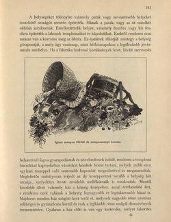 Bild der Seite - 161 - in Az Osztrák-Magyar Monarchia írásban és képben - Morvaország és Szilézia (Morvaország), Band 17/1