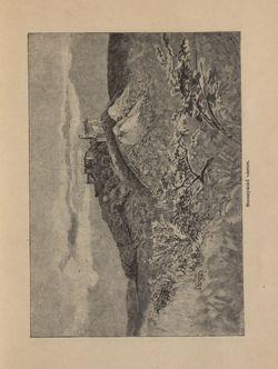 Bild der Seite - 213 - in Az Osztrák-Magyar Monarchia írásban és képben - Magyarország V (1), Band 18