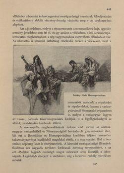 Bild der Seite - 443 - in Az Osztrák-Magyar Monarchia írásban és képben - Bosznia és Hercegovina, Band 22