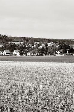 Bild der Seite - 255 - in Kreuzenstein - Die mittelalterliche Burg als Konstruktion der Moderne