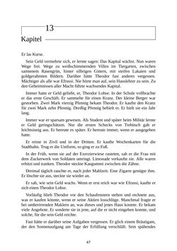 Bild der Seite - 47 - in Das Spinnennetz