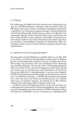 Bild der Seite - 246 - in Vertragsrecht in der Coronakrise